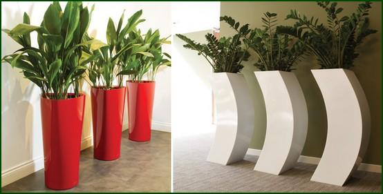 Fotos de vasos decorativos - Plantas grandes para interiores ...