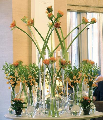 Fotos de vasos de flores