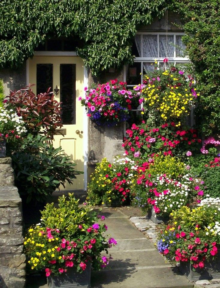 Fotos de decoração de jardim externo