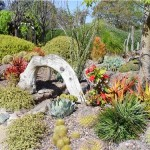 Jardim com suculentas